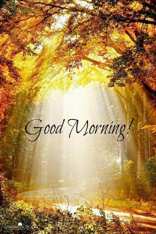+++ 161201 +++ ... Good morning!