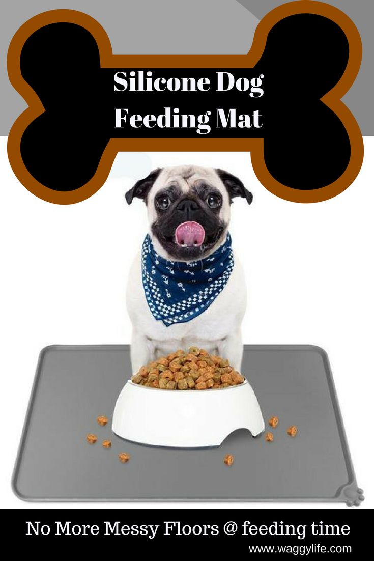 For the sloppy eaters. Helps to protect your floors from food and liquid spills. Easily Cleaned. Safe non toxic silicone rubber material. Works as a non slip mat for food bowls. Free Shipping On This Product.
