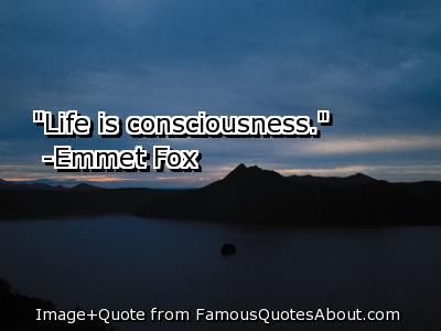quotes+on+consciousness | Consciousness Quotes