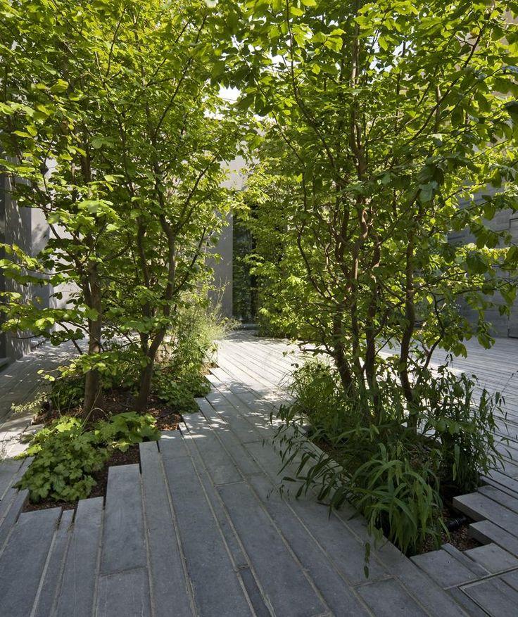 Studio ata LA CASA TRA GLI ALBERI http://fr.archello.com/en/project/la-casa-tra-gli-alberi/2162284
