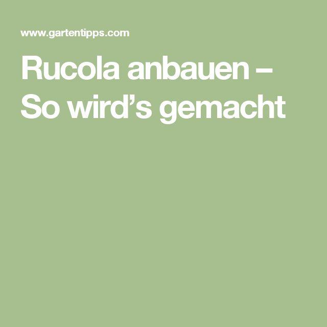 Rucola anbauen – So wird's gemacht