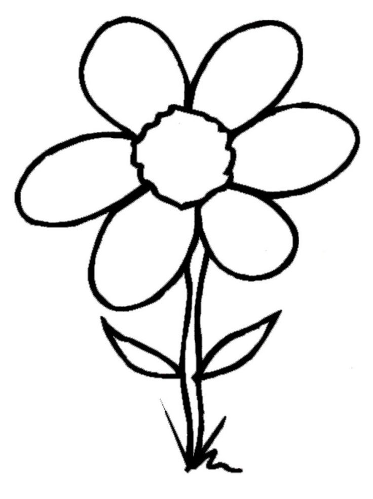 Some Common Variations of the Flower Coloring Pages ...