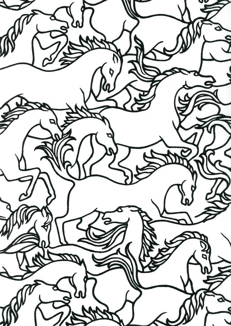 Horses Stampede Verona Fabric Florence broadhurst