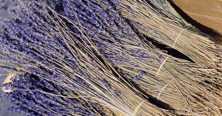 Usos de la hoja para secadora. Las hojas para secadoras tienen muchos usos domésticos y creativos que te permiten hacer algo más que suavizar la ropa en la secadora. Estas pequeñas hojas hacen la vida más fácil en muchos sentidos. Puedes comprar tanto las hojas sin perfume como las de aroma para diversos usos. Una hoja de secadora de flores puede agregar fragancia a una caja ...