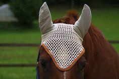 Sommer ist Insektenzeit. Die beliebten Fliegenhäubchen schützen empfindliche Pferdeohren vor Insekten.