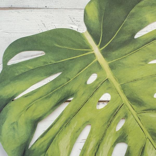 Paper Tropical Leaf Placemats 12 Pressed Cotton Paper Place Tropical Leaves Monstera Leaf