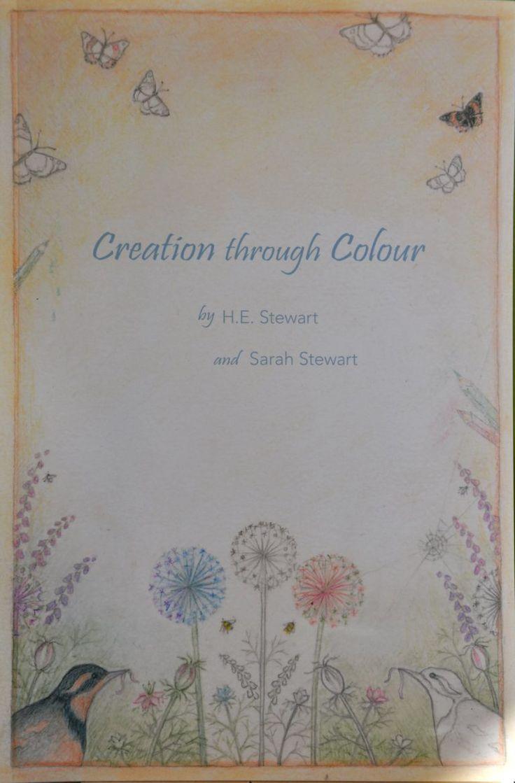 Helen Stewart author artist- Adult Colouring Book