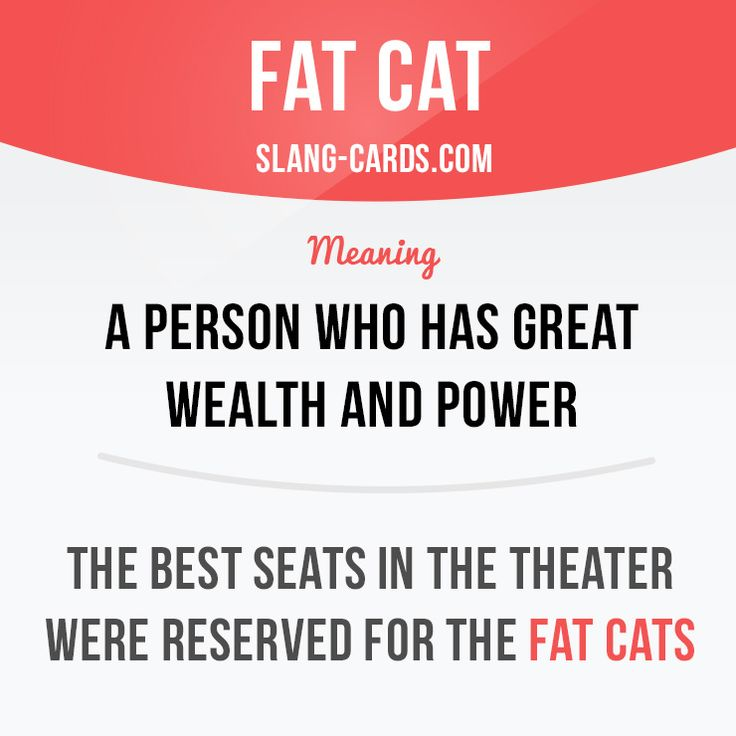 """""""Fat cat"""" is a person who has great wealth and power. Example: The best seats in the theater were reserved for the fat cats. #slang #saying #sayings #phrase #phrases #expression #expressions #english #englishlanguage #learnenglish #studyenglish #language #vocabulary #dictionary #grammar #efl #esl #tesl #tefl #toefl #ielts #toeic #englishlearning #fatcat #power"""