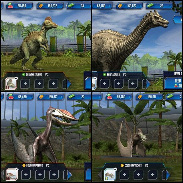 Dinosaurs world game / Columbus in usa