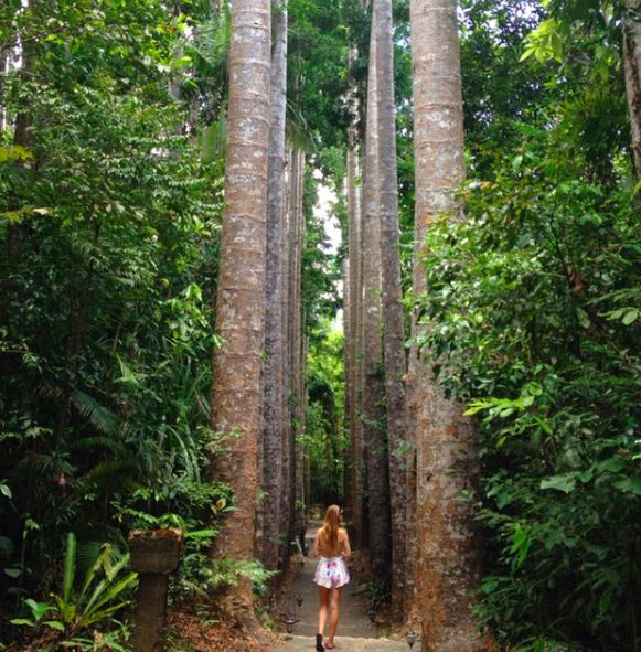 Cairns is often overlooked on a trip to Australia, but it shouldn't be! See why you should visit and what to do in the city and the surrounding areas in this post.