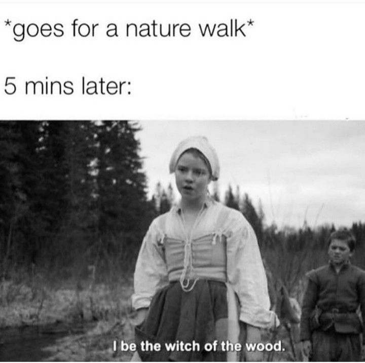 The Witch Of The Woods Witch Meme Witch Quotes Funny Spiritual