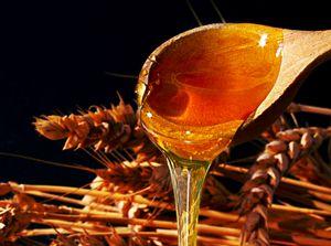honung-huskur-hårvård