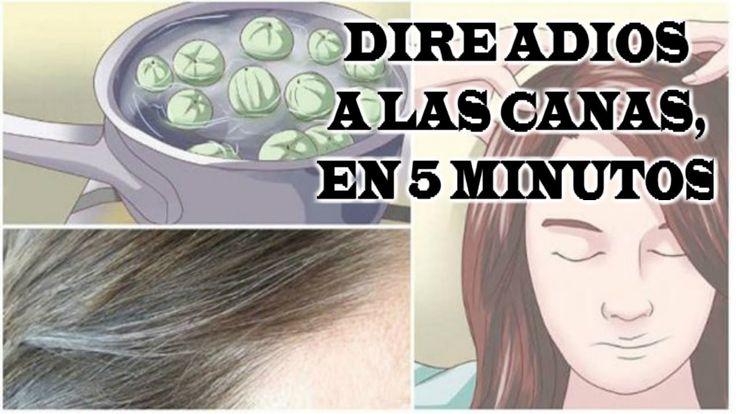 ADIÓS CANAS, Solo pasa esto por tu cabello déjalo 5 minutos y Adiós Canas Por Años! - YouTube