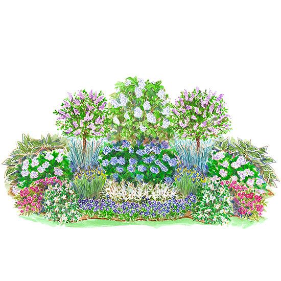 You can enjoy a lush cottage garden, even if you don't have full sun. This combo mixes long-blooming perennials and shrubs like Endless Summer hydrangea for interest from spring to fall. Garden size: 18 by 9 feet./