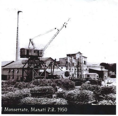 Imágen brindada por: Jorge Pérez. Fecha 1950). Central Monserrate (Operación: 1894-1972) de Manatí, PR. Desde la Hacienda La Esperanza se pueden apreciar sus chimeneas.