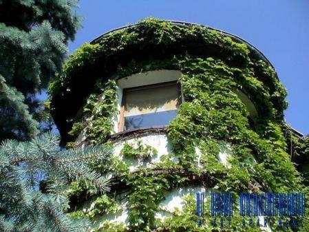 PRESTIŻOWY APARTAMENT Z KRÓLESTWEM FAUNA  http://www.aartapartment.eu/wynajem/118/view/53/Sprzeda%C5%BC%20-%20Dom%20po%C5%82owa/8/prestizowy-apartament-z-krolestwem-fauna.html