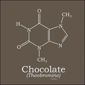 Science is a large part of my life, and I also love chocolate. Theobromine (C7H8N4O2) is my favourite molecule.