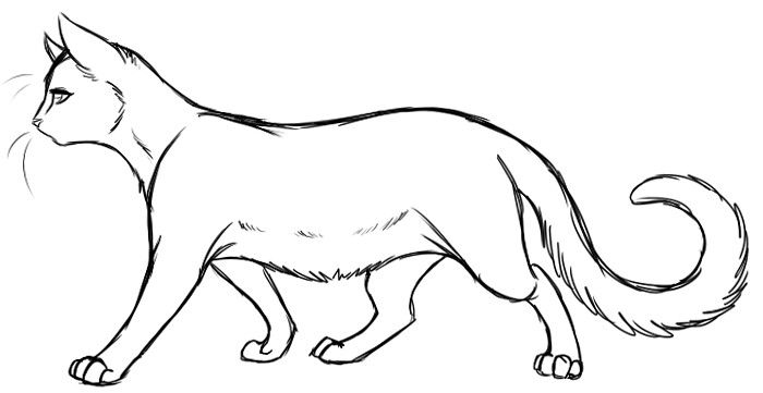 Pin By Ag On Rysunki Cat Coloring Page Warrior Cats Moose Art