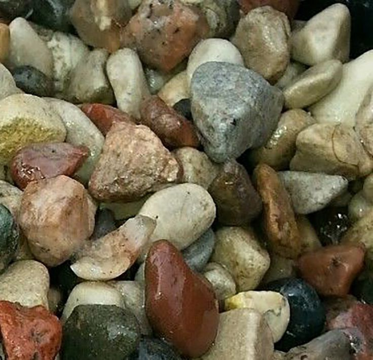 "Amazon.com : Safe & Non-Toxic {Small Size, 0.25"" Inch} 25 Pound Bag of Gravel & Pebbles Decor for Freshwater Aquarium w/ Earthy Toned Rustic Smooth River Inspired Polished Style [Brown, Tan, Red & Gray] : Pet Supplies"