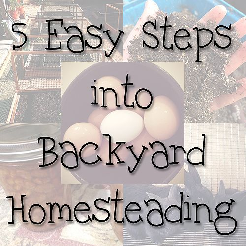 "5 Easy Steps into Backyard Homesteading | Imperfectly Happy: "" ... you may have heard other names like urban homesteading, suburban homesteading or backyard farming. But the basics are the same – taking the space you have, raising food on it and reclaiming vintage skills."" 
