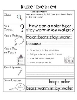 This is a worksheet to go along with a blubber experiment. Students will put their hand in the blubber