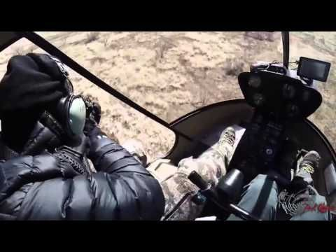 Helikopter ile domuz avı adam domuzların kökünü kuruttu