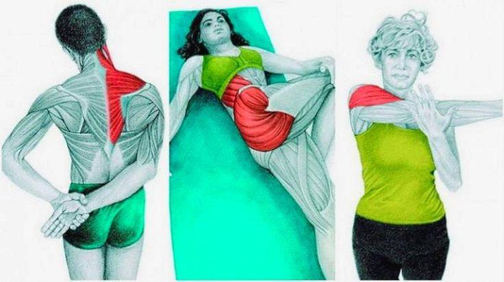 svalových protahovací cvičení