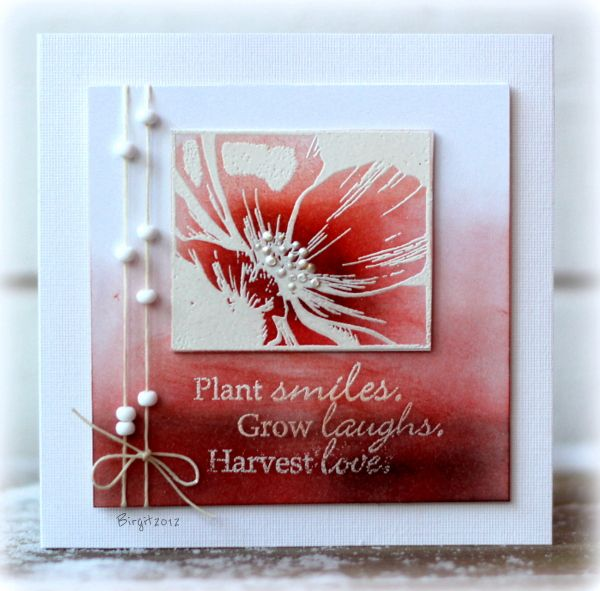 F4A149 Winter Flower by Biggan - Cards and Paper Crafts at Splitcoaststampers