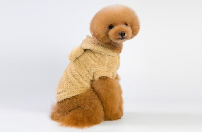 Pin On Small Dog Clothes Patterns
