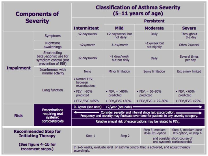 77 best images about School Nursing Asthma and Kids – Sample Asthma Action Plan