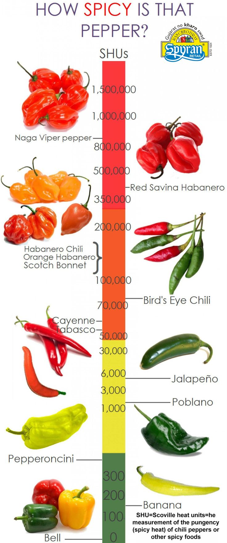 A infographic on How much spicy is your pepper along with its SUV value!!!!