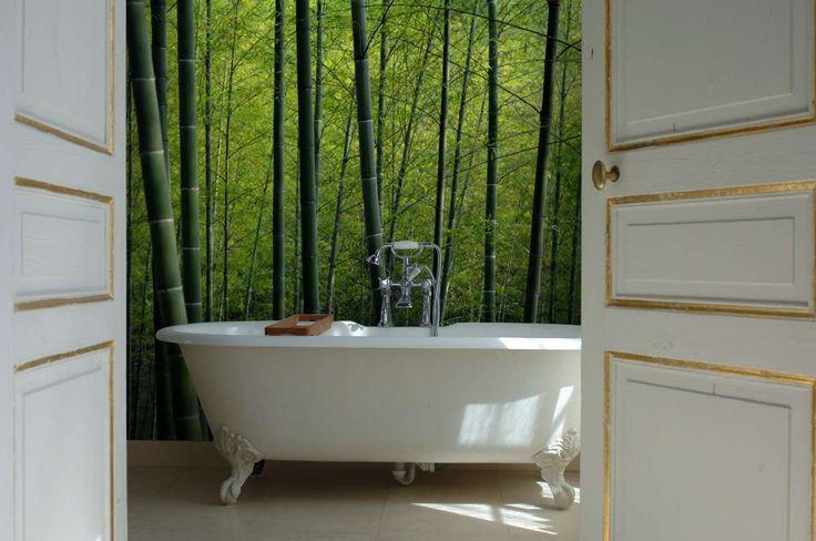Bambu tapet