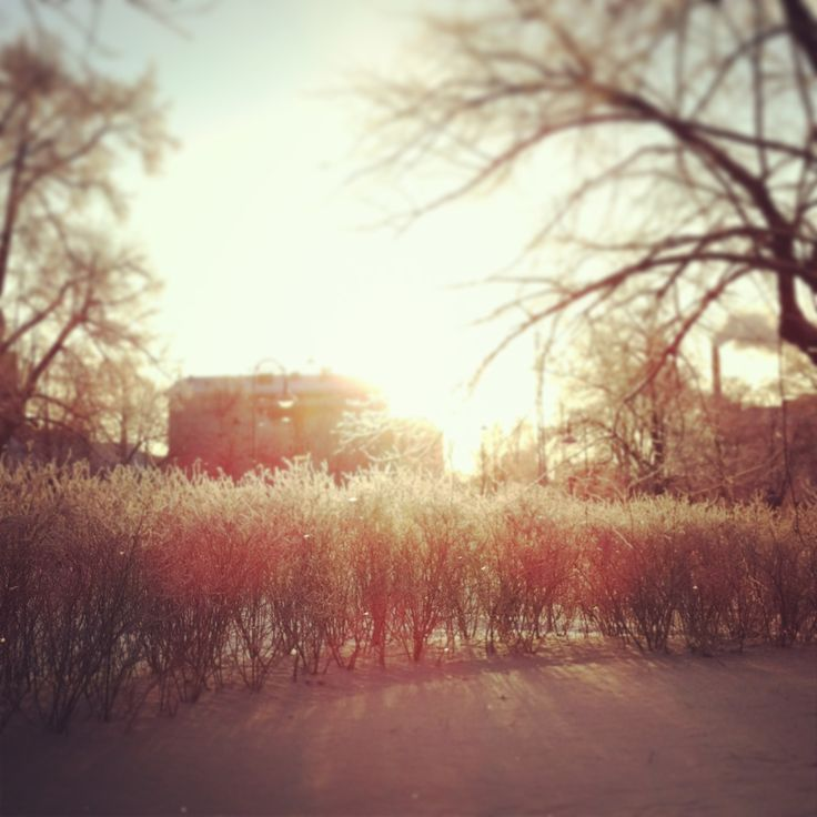 At lunch break there was sun in Tampere, Finland. #tampereallbright #tampereblog