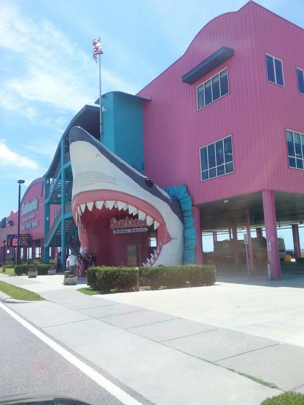 Biloxi, Mississippi Sharks Head Souvenir Shop always a stop when on the coast!!!