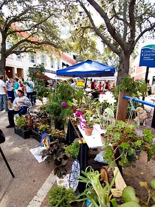 Events & Activities every Saturday from Oct. through May. Bradenton, Florida.