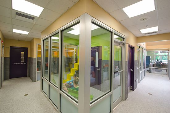 Humane Society of Boulder Valley Gets Catified! Adoption Center ...