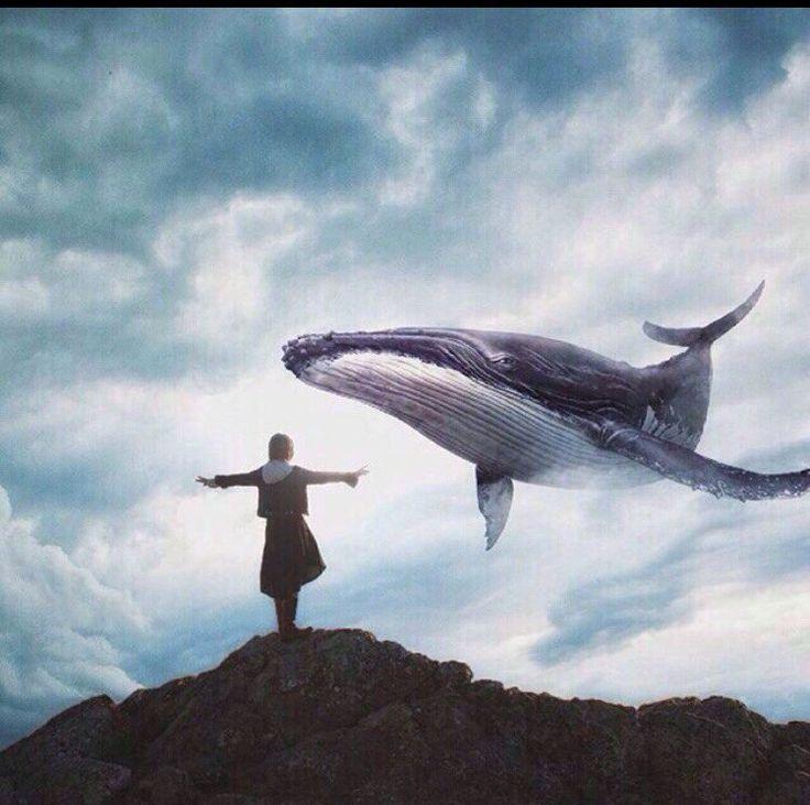 провожу мастер-классы кит картинки на аву можно комбинировать
