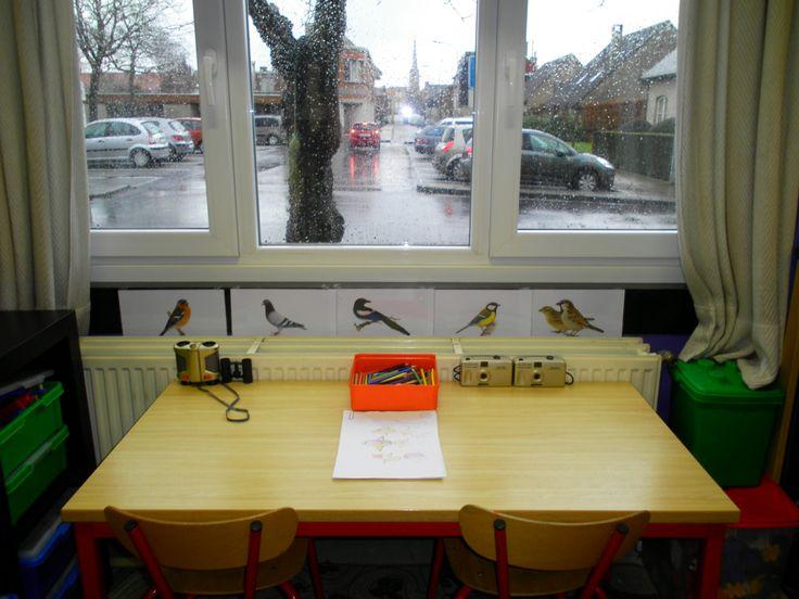 Vogelkijkhoek: plaats een tafel bij het raam waar dat er een boom staat. Hang in de boom vetballen. In de hoek: Prenten van vogels, infoboekjes, fototoestellen, verrekijker, potloden en bladen Meer ideetjes rond thema vogels in de winter: *liestr*