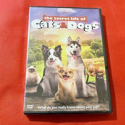 The Secret Life Of Cats And Dogs Dvd 2016 New Sealed In 2020 Dog Cat Your Pet Secret Life