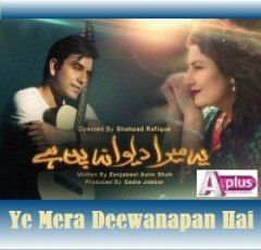 17 images about pakistani dramas on pinterest december for Deewanapan movie
