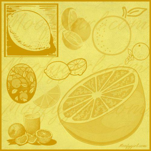 Citrus Lemon Orange Photoshop Brushes Brush Set by moofygirl, $2.99
