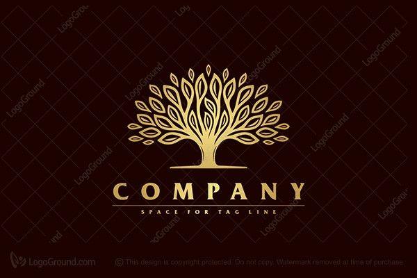 Logo for sale: Golder Tree Logo