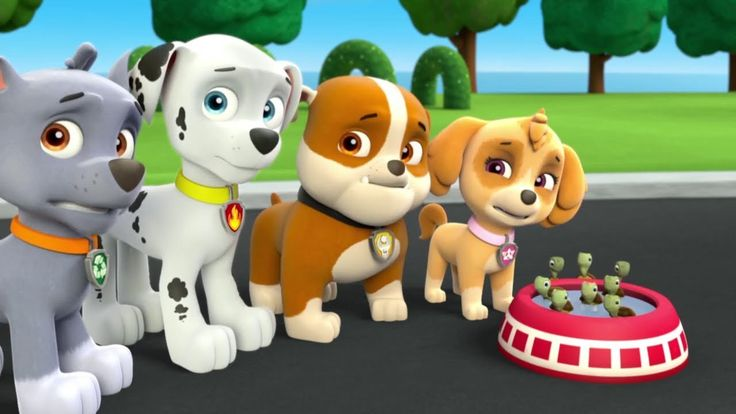 Paw Patrol Mission Paw - Nick Jr Water Park Team Rescue - Paw Patrol Full Episodes Kids Game