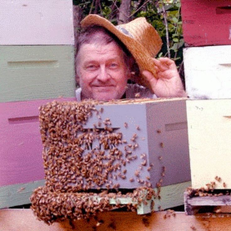 Don Kuchenmeister is moving the FatBeeMan channel to this YouTube site. New videos and ebooks will be highlighted here. http://www.dixiebeesupply.com
