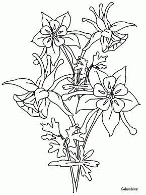 Columbine Flower Cartoon