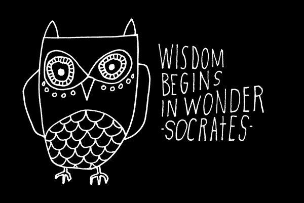 """""""La saggezza inizia dalla meraviglia"""" -Socrate"""