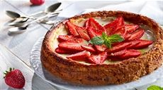 Jahodový cheesecake s mátovým cukrem