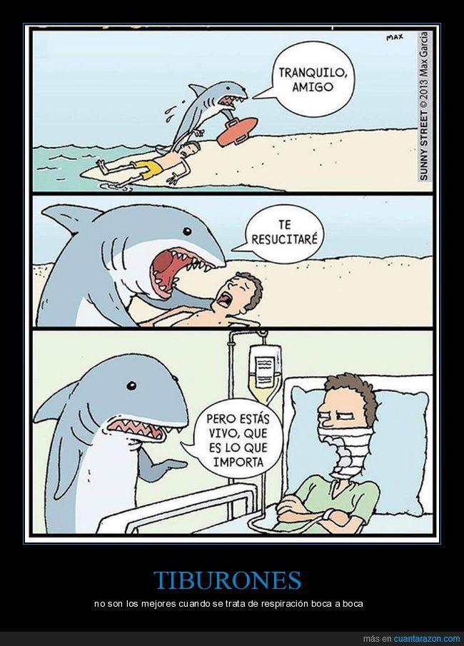 Nunca Confies En Un Tiburon Funny Cartoons Sharks Funny Funny Comic Strips