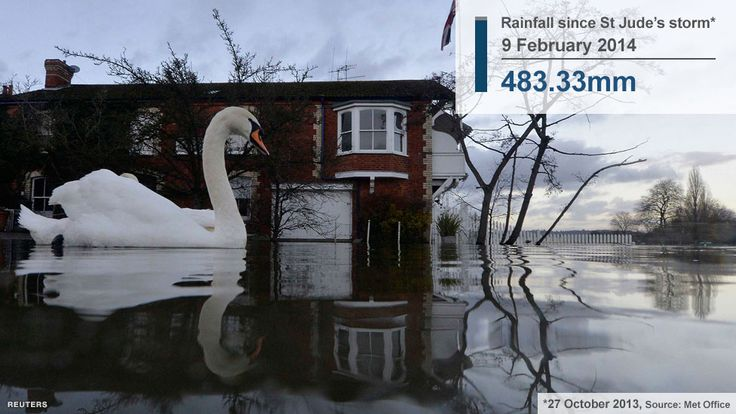 British weather - the winter of 2013-14 Swans swim near riverside properties partially submerged in floodwaters at Henley-on-Thames