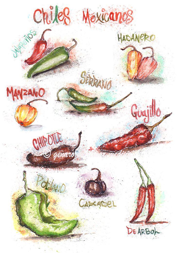 chiles mexicanos by Genaro Martinez Medina